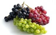 فوائد العنب الاحمر و الاسود و الاخضر للاطفال والكبار
