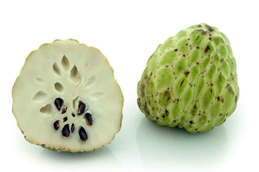 فاكهة القشطة وفوائدها واضرارها للجنس