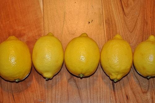 طريقة عمل مربى زهر الليمون السوري