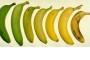بالفيديو : خدعة تغير لون الموز الاسود الى اصفر طازج