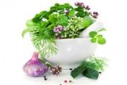 نباتات طبية يمكن زراعتها في المنزل
