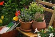 أفكار بسيطة لـ تنسيق حديقة المنزل بالصور