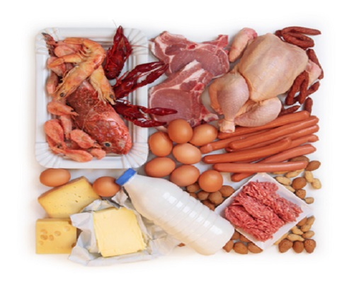 مصادر البروتينات في الغذاء