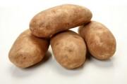 فوائد البطاطا التي جعلتها