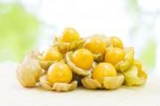 فوائد التوت الذهبي السحرية والعلاجية لانقاص الوزن