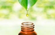 فوائد زيوت الاعشاب الطبيعية المضادة للبكتريا
