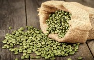 ما هو مستخلص القهوة الخضراء ؟