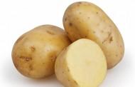 طريقة تخزين البطاطس بقشرها سليمة