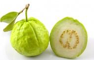 ما هي فوائد بذر الجوافة  ؟