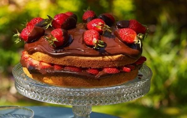 طريقة عمل كيكة الفراولة بالشوكولاته