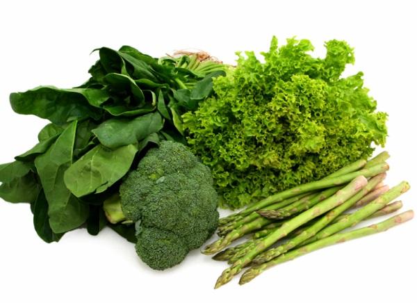 حفظ الخضروات الورقية بالثلاجة