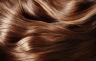 ماهي الاكلات التي تقوي الشعر ؟