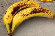ما هي طريقة انضاج الموز الاخضر ؟
