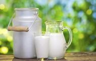 ما هي فوائد شرب الحليب في الصباح ؟