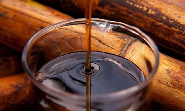 ما هي افضل انواع عسل قصب السكر و طريقة صنعه ؟