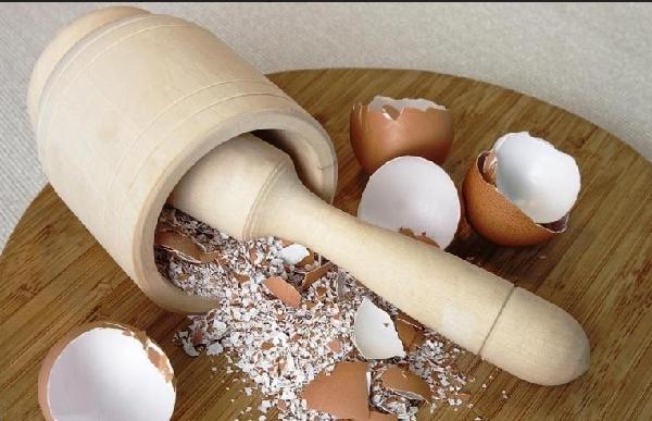 ما هي فوائد قشر البيض للطول