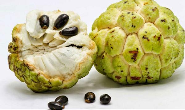 فوائد فاكهة القشطة للجسم