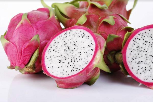 فوائد فاكهة التنين للكلى