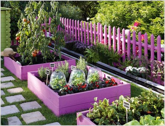 الزراعة في حديقة المنزل