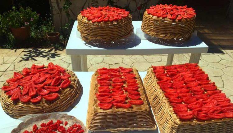 استخدامات الطماطم المجففة